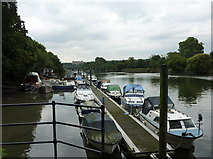 TQ1773 : View of the Thames near Riverside, Richmond by pam fray
