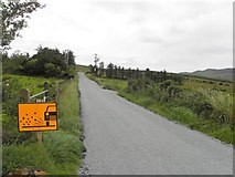 G6078 : Road at Bogagh Glebe by Kenneth  Allen