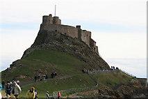NU1341 : Lindisfarne Castle by David Robinson