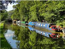 SD9926 : Rochdale Canal, Mayroyd by David Dixon