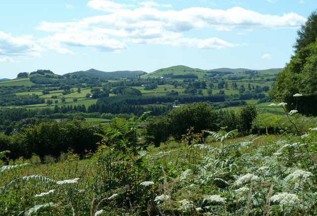 Mid Wales landscape on a summer afternoon