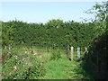 TL4500 : Footpath gate near Epping by Malc McDonald