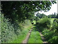 TL4500 : Track in the countryside near Epping by Malc McDonald