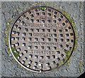 J4173 : Manhole cover, Dundonald by Rossographer