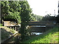 TQ4769 : Weir and bridge over River Cray by David Anstiss