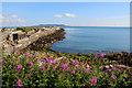 O2428 : East Pier, Dun Laoghaire Harbour, Dublin by Christine Matthews