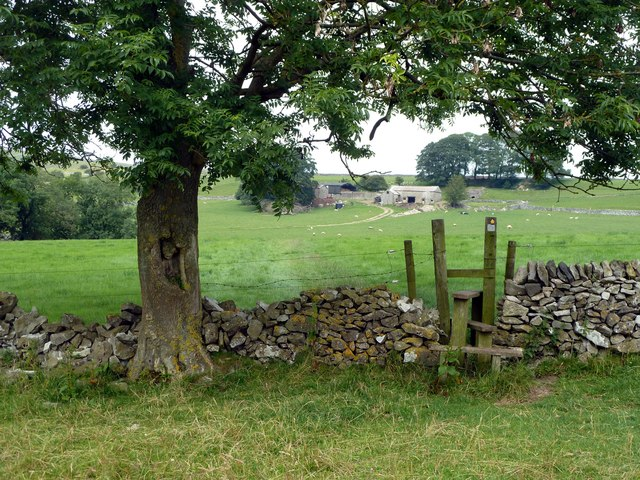 Wall and stile in Madge Dale