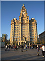 SJ3390 : The Liver Building in the evening sun by John S Turner