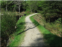 NX4465 : A path along the top of an old dam looking north by Ann Cook