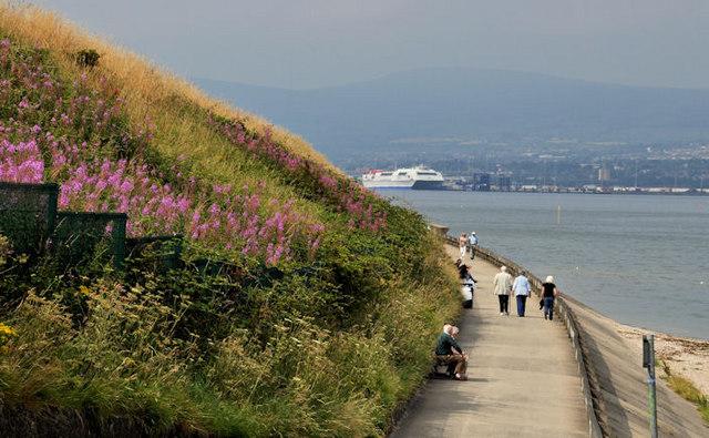 Coastal path, Holywood