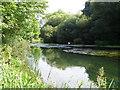 SU1725 : River Avon near Bodenham by Maigheach-gheal