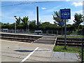 TQ3763 : Tram crossing by Stephen Craven