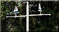 J4079 : Weathervane, Holywood by Albert Bridge