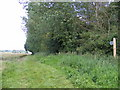 TM2351 : Footpath to Low Road by Adrian Cable
