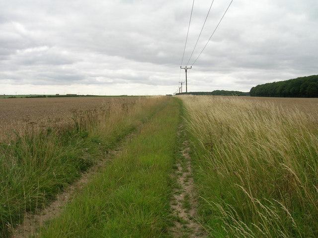 Farm track towards Grange Farm