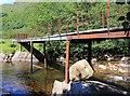 NN2216 : Footbridge over River Fyne by David P Howard