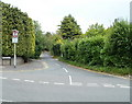 ST2887 : Leafy suburb, Glasllwch Lane, Newport by Jaggery
