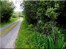 G7878 : Road at Drumadart by Kenneth  Allen