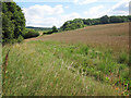 TQ6767 : Wheat field by Luddesdown Road by Oast House Archive