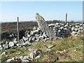 SN6615 : Pen-y-Coed Maen Hir, Standing stone in a wall by Nigel Davies