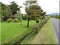 G6247 : Roadside garden by Jonathan Wilkins