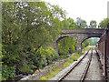 SE0336 : Bridge Over Railway and Bridgehouse Beck by David Dixon