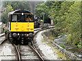 SE0336 : KWVR Alongside Bridgehouse Beck by David Dixon