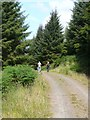 NS1170 : Walkers on long distance path by Russel Wills