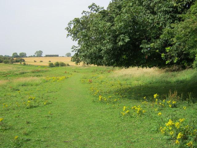 Footpath from Hallgarth to Sherburn