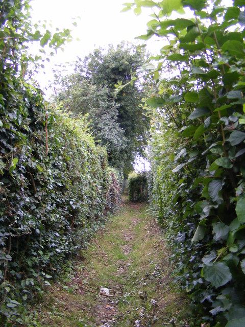 Footpath to Mill Road & Chase's Lane