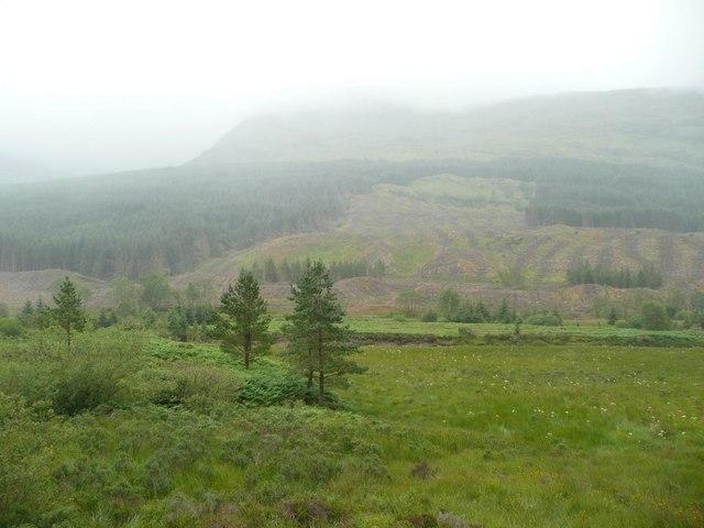 Glen Lochy in the mist