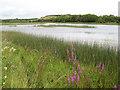 G8769 : Durnesh Lake by Jonathan Wilkins