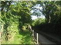 TQ4662 : Footpath to Chelsfield Hill Wood by David Anstiss