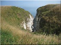 TA1974 : Bempton Cliffs in August by Jonathan Thacker