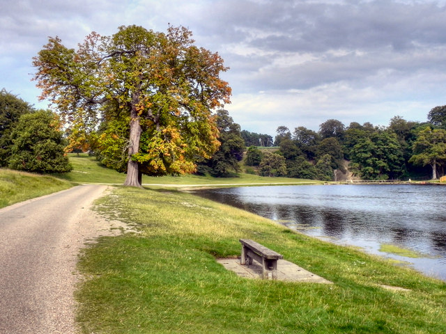 Path by the Lake, Studley Royal Water Garden
