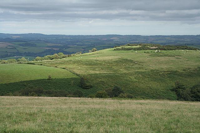 West Buckfastleigh: Wallaford Down