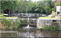 SE2519 : Double Lock (Lower Lock) 13 from below by Mike Todd