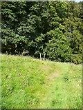 SE0026 : Hebden Royd Footpath 19 approaching Broad Bottom Wood, Mytholmroyd by Humphrey Bolton