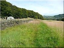 SE0026 : Wood Side, Mytholmroyd by Humphrey Bolton