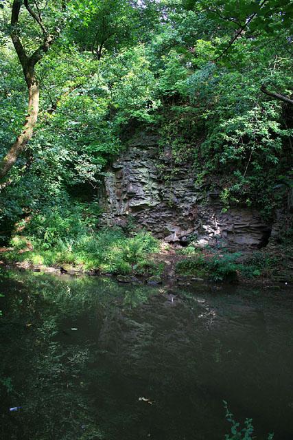 Cliff in Wickham Glen