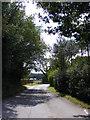 TM2647 : Sandy Lane, Woodbridge by Geographer