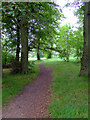 NS5762 : Path in Queens Park by Thomas Nugent