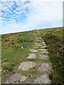 SX6981 : Path south of Hookney Tor by Stephen Craven