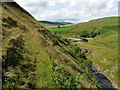 NT8906 : Footpath above the River Coquet by Andrew Curtis
