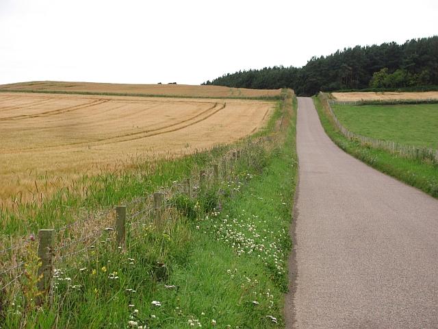 Minor road near Garmouth