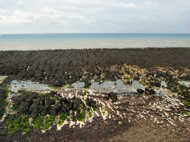 Rock Pools - Rottingdean beach by Paul Gillett