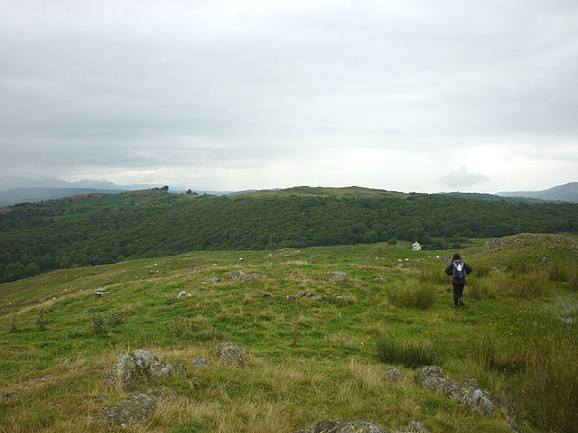 North from the top of Stribers Allotment (188m)