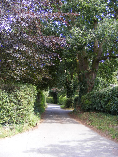 Footpath to Lodge Road & Orchard Lane