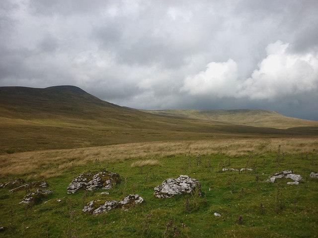 Limestone outcrops, Herningside