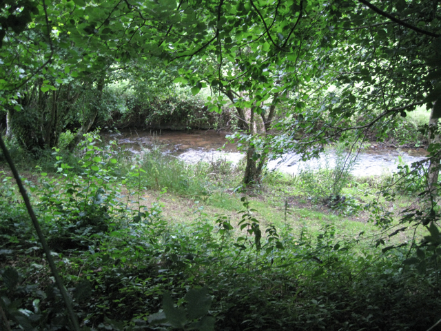 Harbourne River or a side-stream